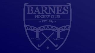 Mixed Summer Hockey starts tomorrow !