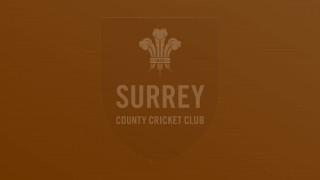 District Cricket
