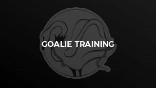 Goalie training