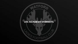 U14 Academy Hornets