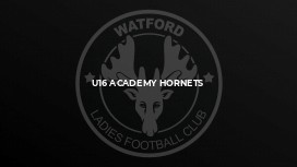 U16 Academy Hornets