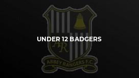 Under 12 Badgers