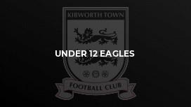 Under 12 Eagles