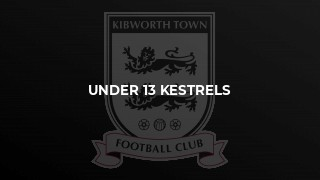Kestrels progress to final