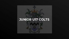 Junior U17 Colts