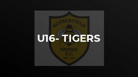 U16- Tigers