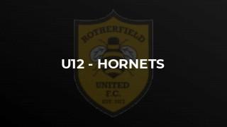 U12 - Hornets