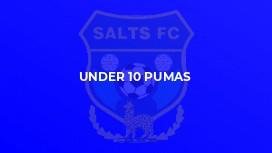 Under 10 Pumas