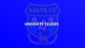 Under 15 Tigers