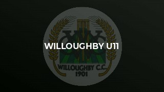 Willoughby Lose Final League Game by One Run