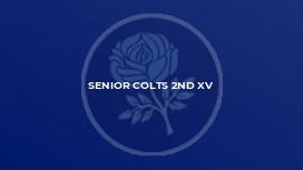 Senior Colts 2nd XV