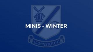 Minis - Winter