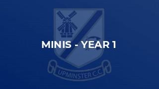 Minis - Year 1