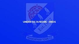 Under 6s Juniors - Reds