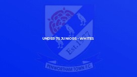 Under 7s Juniors - Whites