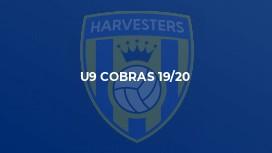 U9 Cobras 19/20