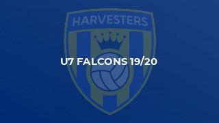 U7 Falcons 19/20