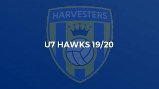 U7 Hawks 19/20