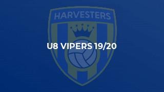 U8 Vipers 19/20