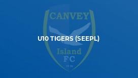 U10 Tigers (SEEPL)