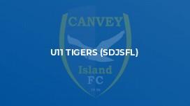 U11 Tigers (SDJSFL)