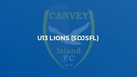 U13 Lions (SDJSFL)
