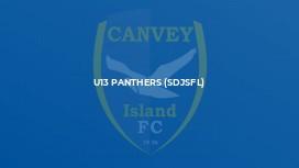 U13 Panthers (SDJSFL)
