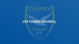 U13 Tigers (SDJSFL)