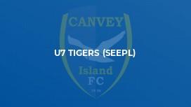 U7 Tigers (SEEPL)
