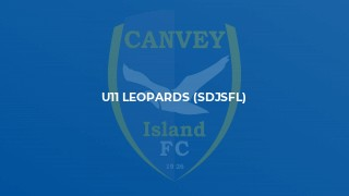 U11 Leopards (SDJSFL)