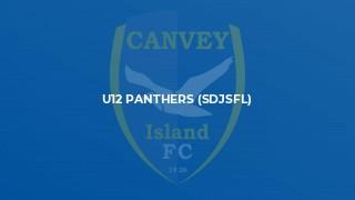 U12 Panthers (SDJSFL)