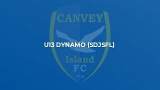 U13 Dynamo (SDJSFL)