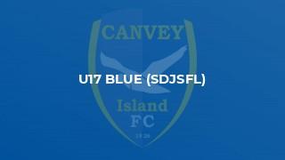 U17 Blue (SDJSFL)