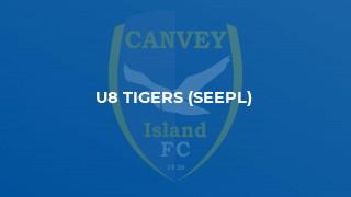 U8 Tigers (SEEPL)