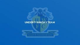 Under 7 Sunday Team