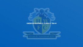 Under 9 Kestrels Sunday Team