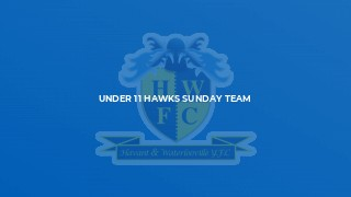 Under 11 Hawks Sunday Team