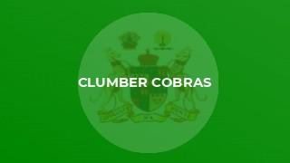 Clumber Cobras