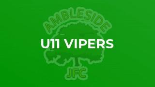 U11 Vipers