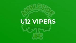 U12 Vipers
