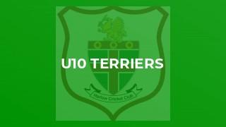 U10 Terriers
