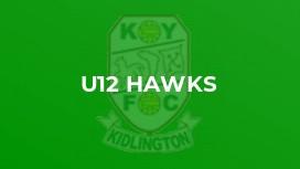 U12 Hawks
