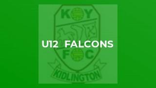 U12  Falcons