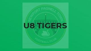U8 Tigers