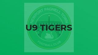 U9 Tigers