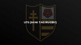 U7s (mini tag rugby)