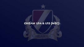 Cheam U14 & U15 (NEC)