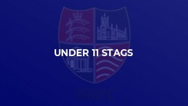 Under 11 Stags