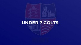 Under 7 Colts