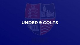 Under 9 Colts
